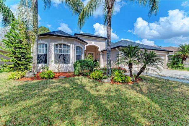 22939 Eagles Watch Drive, Land O Lakes, FL 34639 (MLS #A4428161) :: Gate Arty & the Group - Keller Williams Realty