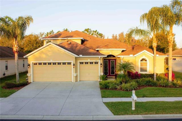 1751 Fircrest Court, Wesley Chapel, FL 33543 (MLS #A4428252) :: Team Bohannon Keller Williams, Tampa Properties