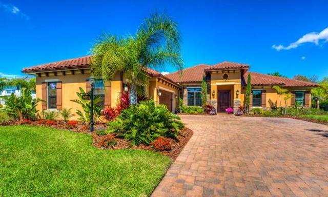14115 9TH Terrace NE, Bradenton, FL 34212 (MLS #A4428254) :: Rabell Realty Group