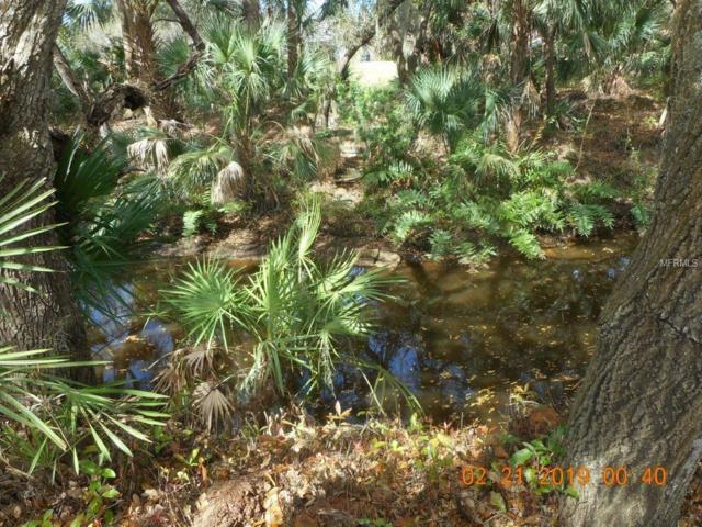1566 Ranch Road, Nokomis, FL 34275 (MLS #A4428379) :: Remax Alliance