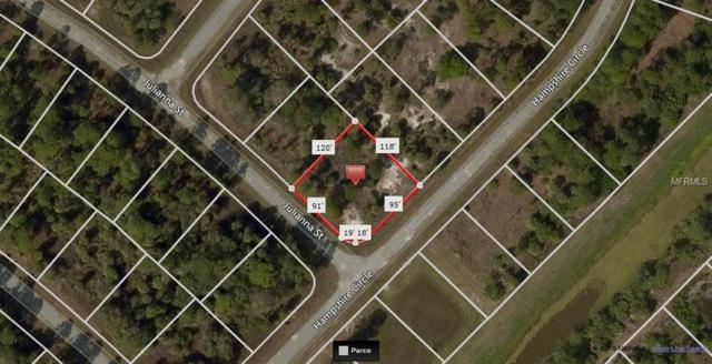 Julianna Street, North Port, FL 34288 (MLS #A4428573) :: Baird Realty Group