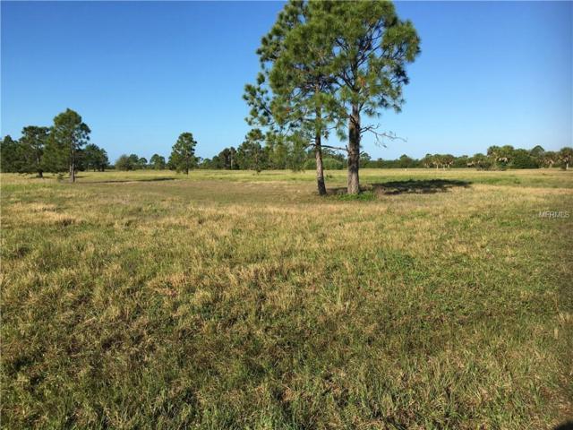 12139 Sea-Robin Lane, Placida, FL 33946 (MLS #A4428626) :: Burwell Real Estate