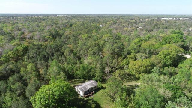 10306 Revell Road, Duette, FL 34219 (MLS #A4429211) :: The Duncan Duo Team