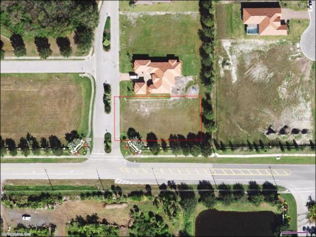 905 143RD Street NE, Bradenton, FL 34212 (MLS #A4429701) :: Rabell Realty Group