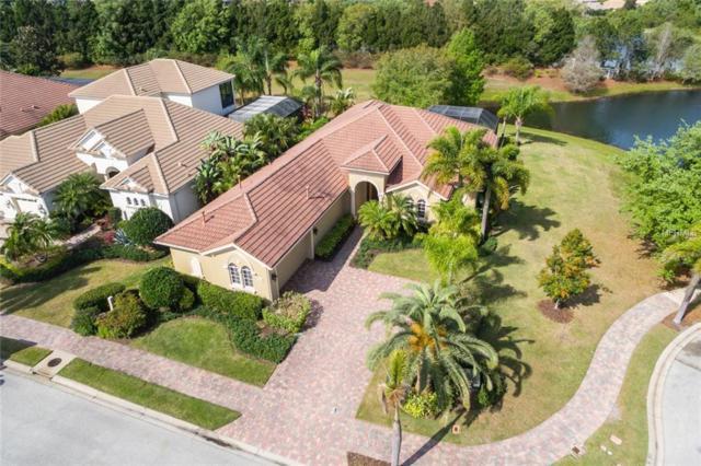 6910 Brier Creek Court, Lakewood Ranch, FL 34202 (MLS #A4430321) :: Zarghami Group