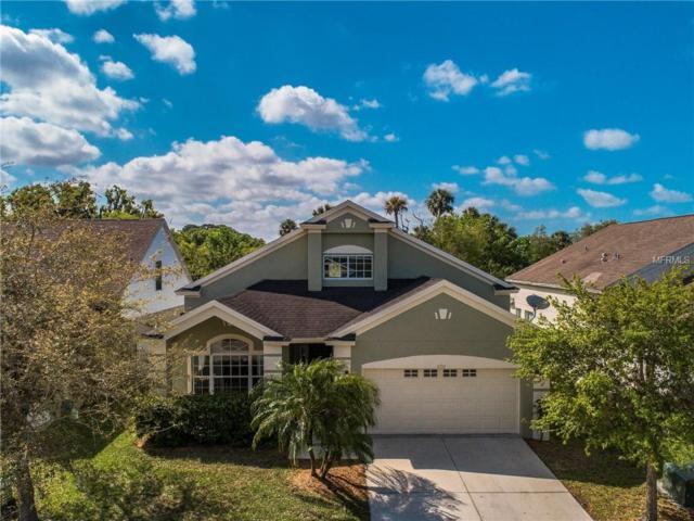 6723 Rock Bridge Lane, Ellenton, FL 34222 (MLS #A4430463) :: Lovitch Realty Group, LLC