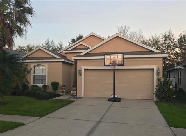 13704 Sigler Street, Riverview, FL 33579 (MLS #A4430488) :: Medway Realty