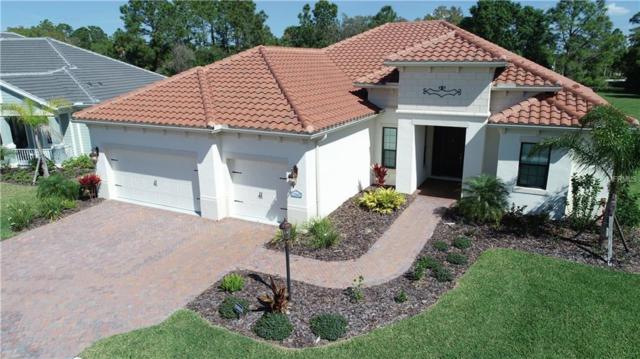 12662 Harney Street, Venice, FL 34293 (MLS #A4430609) :: NewHomePrograms.com LLC