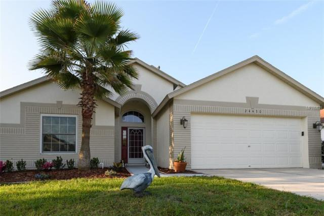 24430 Summer Nights Court, Lutz, FL 33559 (MLS #A4430693) :: The Duncan Duo Team