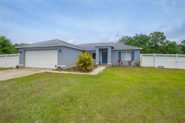 1809 Butch Cassidy Trail, Wimauma, FL 33598 (MLS #A4430717) :: Jeff Borham & Associates at Keller Williams Realty