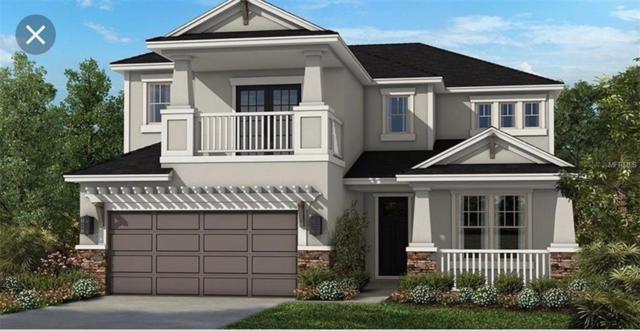 5913 Anise Drive, Sarasota, FL 34238 (MLS #A4430777) :: Delgado Home Team at Keller Williams