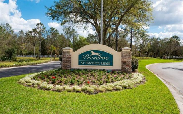 22510 Morning Glory Circle, Bradenton, FL 34202 (MLS #A4430942) :: Medway Realty