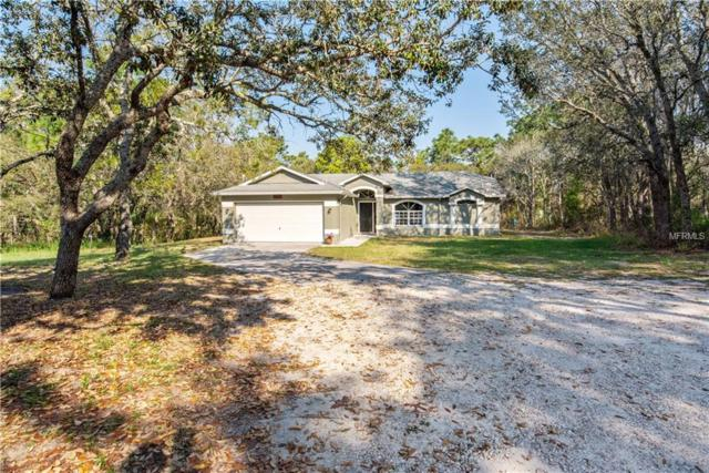 18809 Sugarberry Lane, Spring Hill, FL 34610 (MLS #A4431091) :: Dalton Wade Real Estate Group