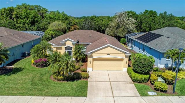 7814 Castleisland Drive, Sarasota, FL 34240 (MLS #A4431191) :: RE/MAX Realtec Group