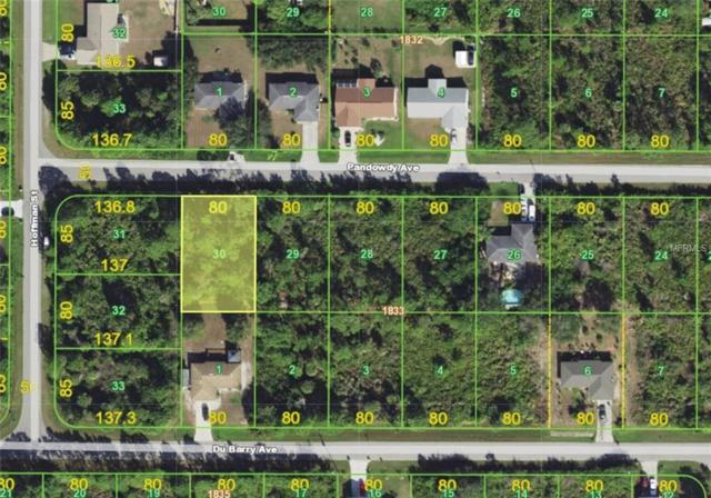 12081 Pandowdy Avenue, Port Charlotte, FL 33981 (MLS #A4431230) :: Medway Realty
