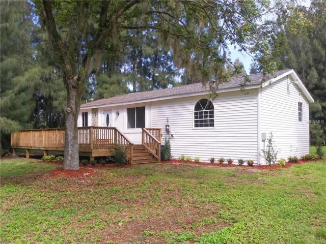 33330 Oil Well Road, Punta Gorda, FL 33955 (MLS #A4431236) :: Burwell Real Estate