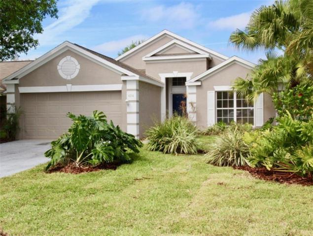 4214 Pine Isle Drive, Lutz, FL 33558 (MLS #A4431377) :: Griffin Group