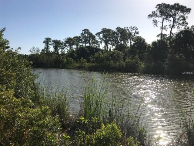 12280 Butterfish Court, Placida, FL 33946 (MLS #A4431703) :: The BRC Group, LLC