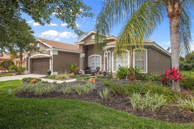 13049 Peregrin Circle, Bradenton, FL 34212 (MLS #A4432065) :: The Duncan Duo Team