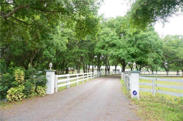 2505 Fort Hamer Road, Parrish, FL 34219 (MLS #A4432122) :: Medway Realty