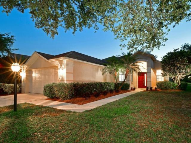 6446 Blue Grosbeak Circle, Lakewood Ranch, FL 34202 (MLS #A4432303) :: Charles Rutenberg Realty