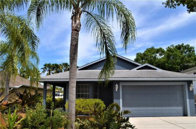 5368 Levi Lane, Sarasota, FL 34233 (MLS #A4432702) :: The Duncan Duo Team