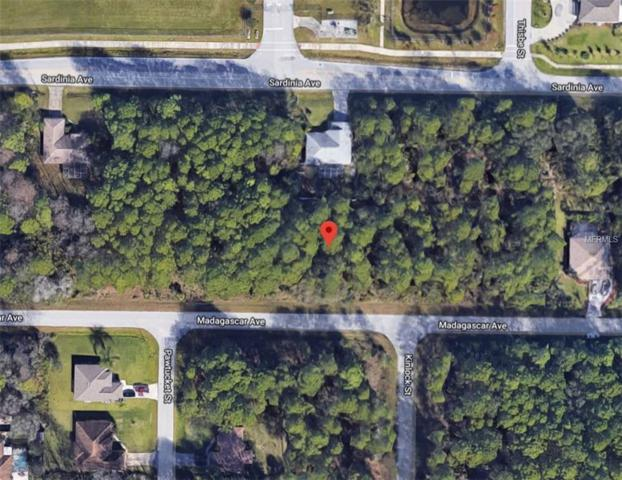 0958068131 Madagascar Avenue, North Port, FL 34286 (MLS #A4433312) :: Burwell Real Estate