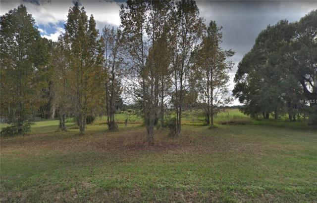 3195 E Trapnell Road, Plant City, FL 33566 (MLS #A4433315) :: The Duncan Duo Team