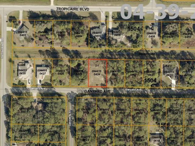 Ganyard Avenue, North Port, FL 34291 (MLS #A4433374) :: Cartwright Realty