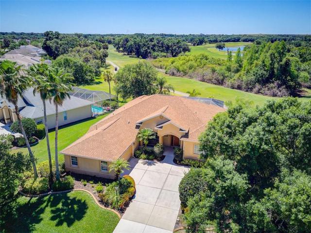 702 Planters Manor Way, Bradenton, FL 34212 (MLS #A4433411) :: Team Pepka