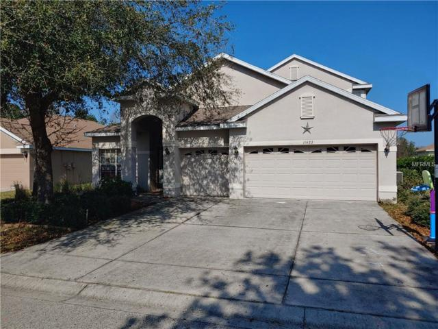 11423 Crisfield Place, New Port Richey, FL 34654 (MLS #A4433418) :: The Duncan Duo Team