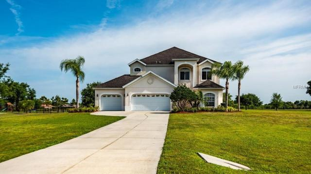 17816 Roanwood Court, Parrish, FL 34219 (MLS #A4433484) :: The Duncan Duo Team