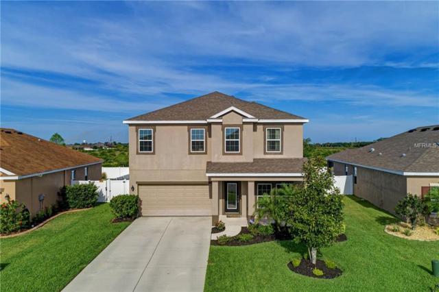 7931 111TH Terrace E, Parrish, FL 34219 (MLS #A4433769) :: NewHomePrograms.com LLC