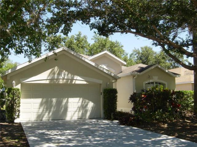 5637 Oakshire Avenue, Sarasota, FL 34233 (MLS #A4433773) :: NewHomePrograms.com LLC