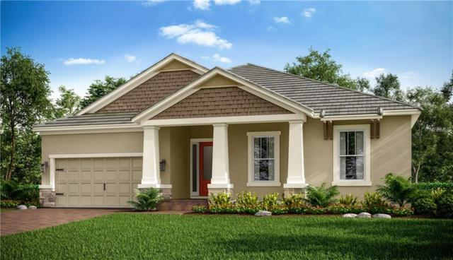 4163 Barbour Trail, Odessa, FL 33556 (MLS #A4433784) :: Griffin Group