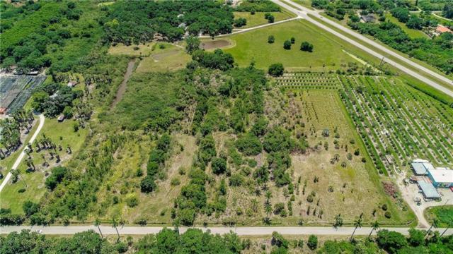 401 Terra Ceia Road, Terra Ceia, FL 34250 (MLS #A4433794) :: The Duncan Duo Team