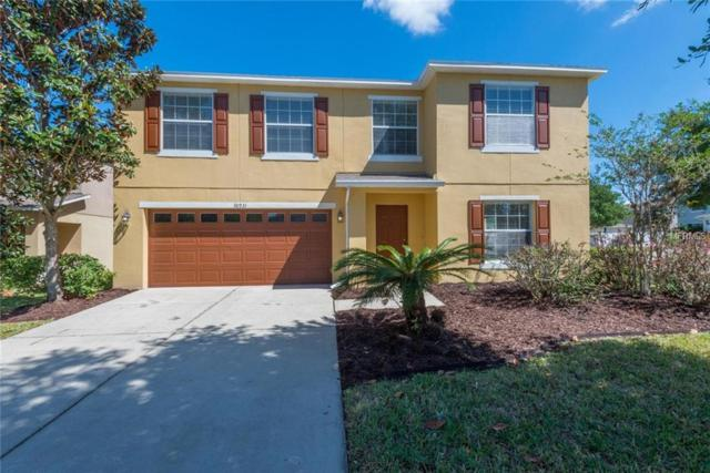 30931 Sonnet Glen Drive, Wesley Chapel, FL 33543 (MLS #A4433817) :: Griffin Group