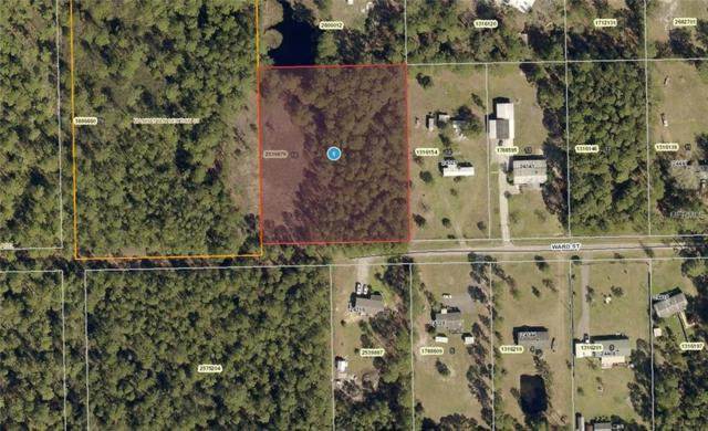 24305 Ward Street, Astor, FL 32102 (MLS #A4433913) :: Bustamante Real Estate