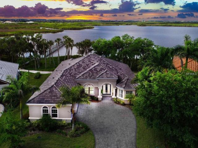 11531 30TH Cove E, Parrish, FL 34219 (MLS #A4434310) :: Cartwright Realty