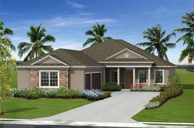 16919 Myrtle Hill Hill, Parrish, FL 34219 (MLS #A4434325) :: Sarasota Gulf Coast Realtors