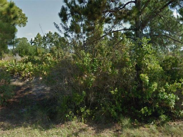 12223 Diversey Avenue, Port Charlotte, FL 33981 (MLS #A4434342) :: The BRC Group, LLC