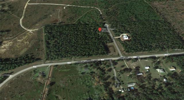 19905 NE 50TH Road, Hawthorne, FL 32640 (MLS #A4434382) :: KELLER WILLIAMS ELITE PARTNERS IV REALTY