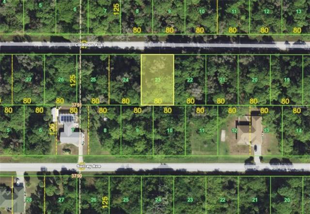 12021 Coleman Avenue, Port Charlotte, FL 33981 (MLS #A4434745) :: The BRC Group, LLC