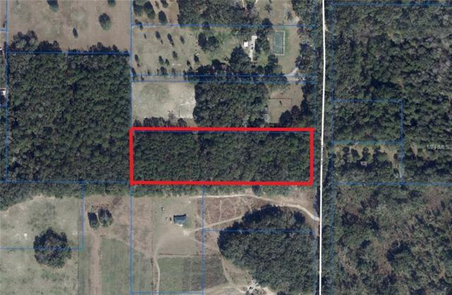 2408 NW 162ND Street, Newberry, FL 32669 (MLS #A4435159) :: The Duncan Duo Team