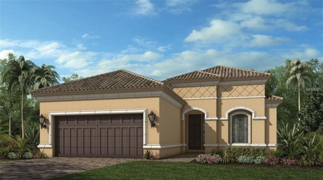 20167 Umbria Hill Drive, Tampa, FL 33647 (MLS #A4435407) :: The Duncan Duo Team