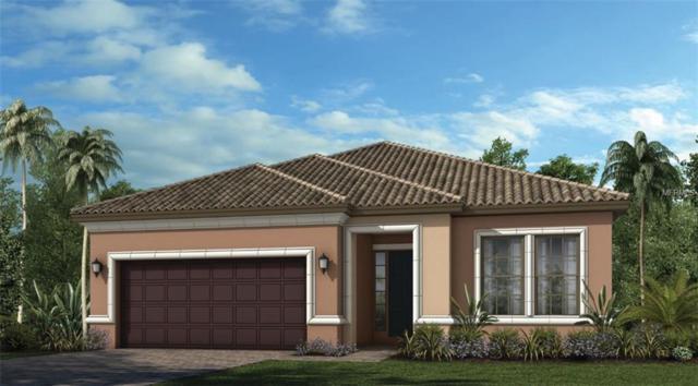 20153 Umbria Hill Road, Tampa, FL 33647 (MLS #A4435427) :: Team Bohannon Keller Williams, Tampa Properties
