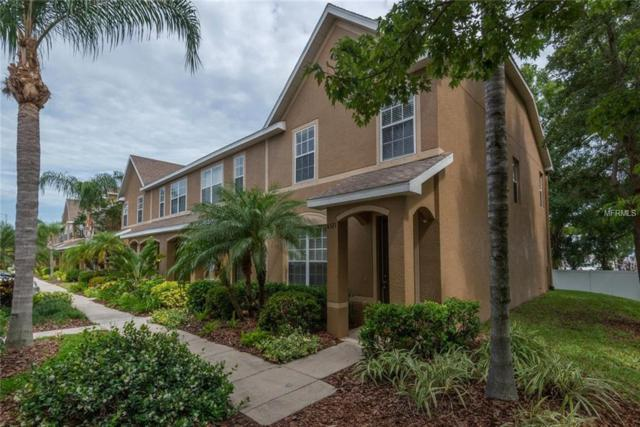 6521 Black Mangrove Drive, Largo, FL 33773 (MLS #A4435602) :: Mark and Joni Coulter | Better Homes and Gardens