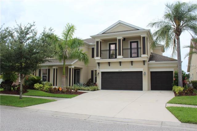 6614 Park Strand Drive, Apollo Beach, FL 33572 (MLS #A4435938) :: Griffin Group