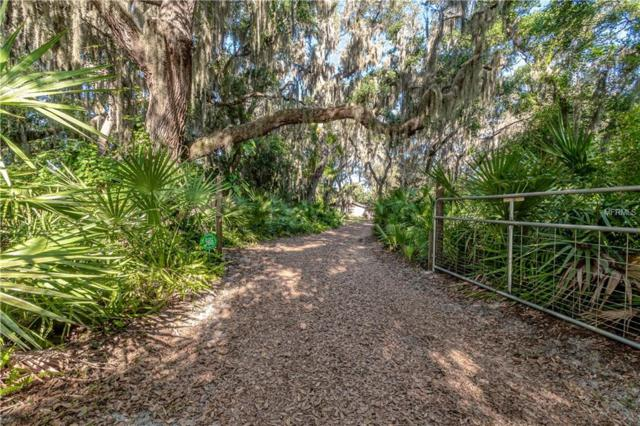 2807 Country River Drive, Parrish, FL 34219 (MLS #A4435962) :: Godwin Realty Group