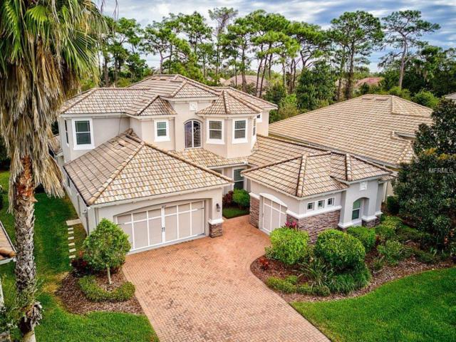 8219 Country Park Way, Sarasota, FL 34243 (MLS #A4435986) :: Mark and Joni Coulter | Better Homes and Gardens